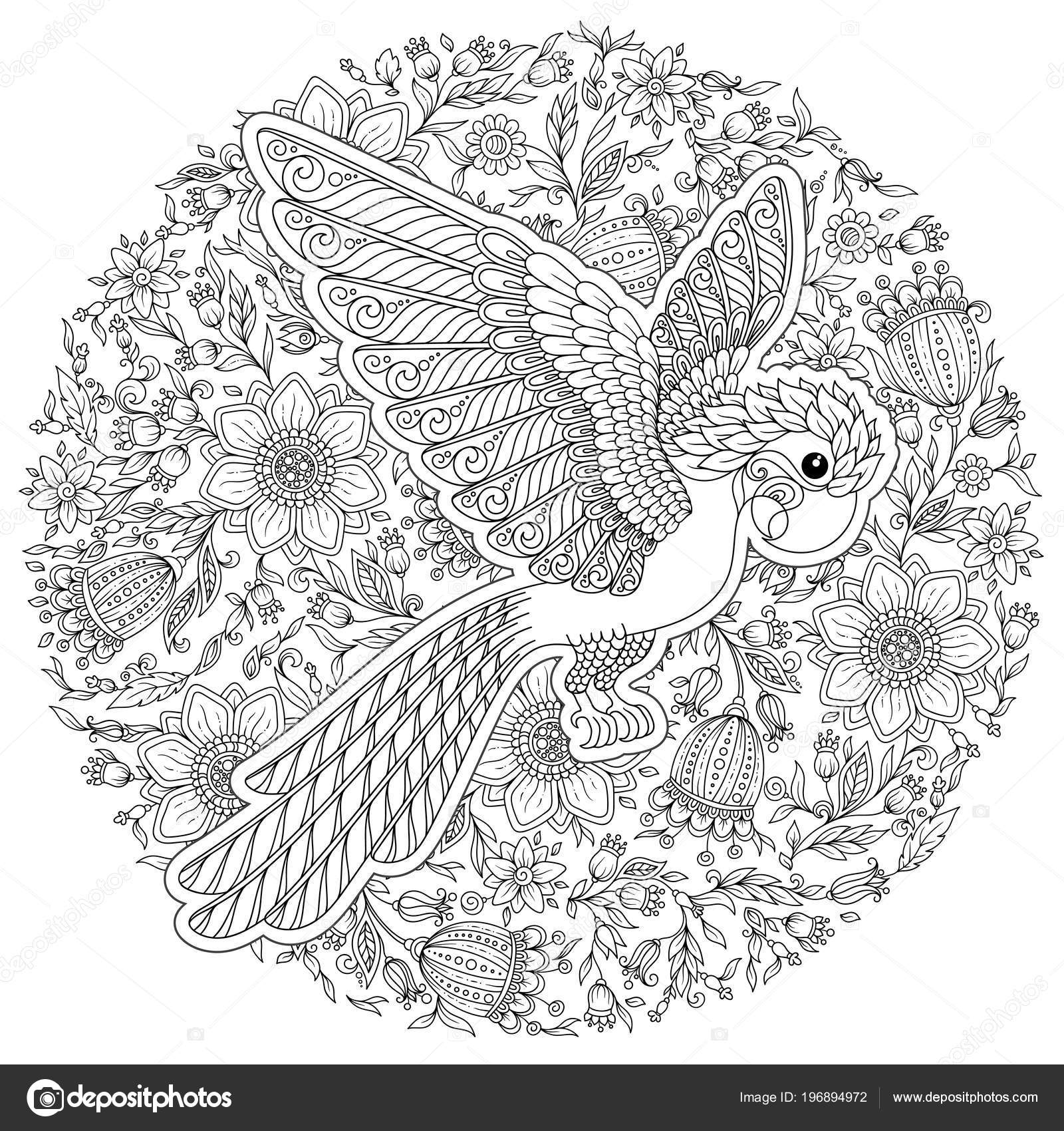 Coloriage Anti Stress Perroquet.Zentangle Stylisee Perroquet Dessin Anime Croquis Dessine
