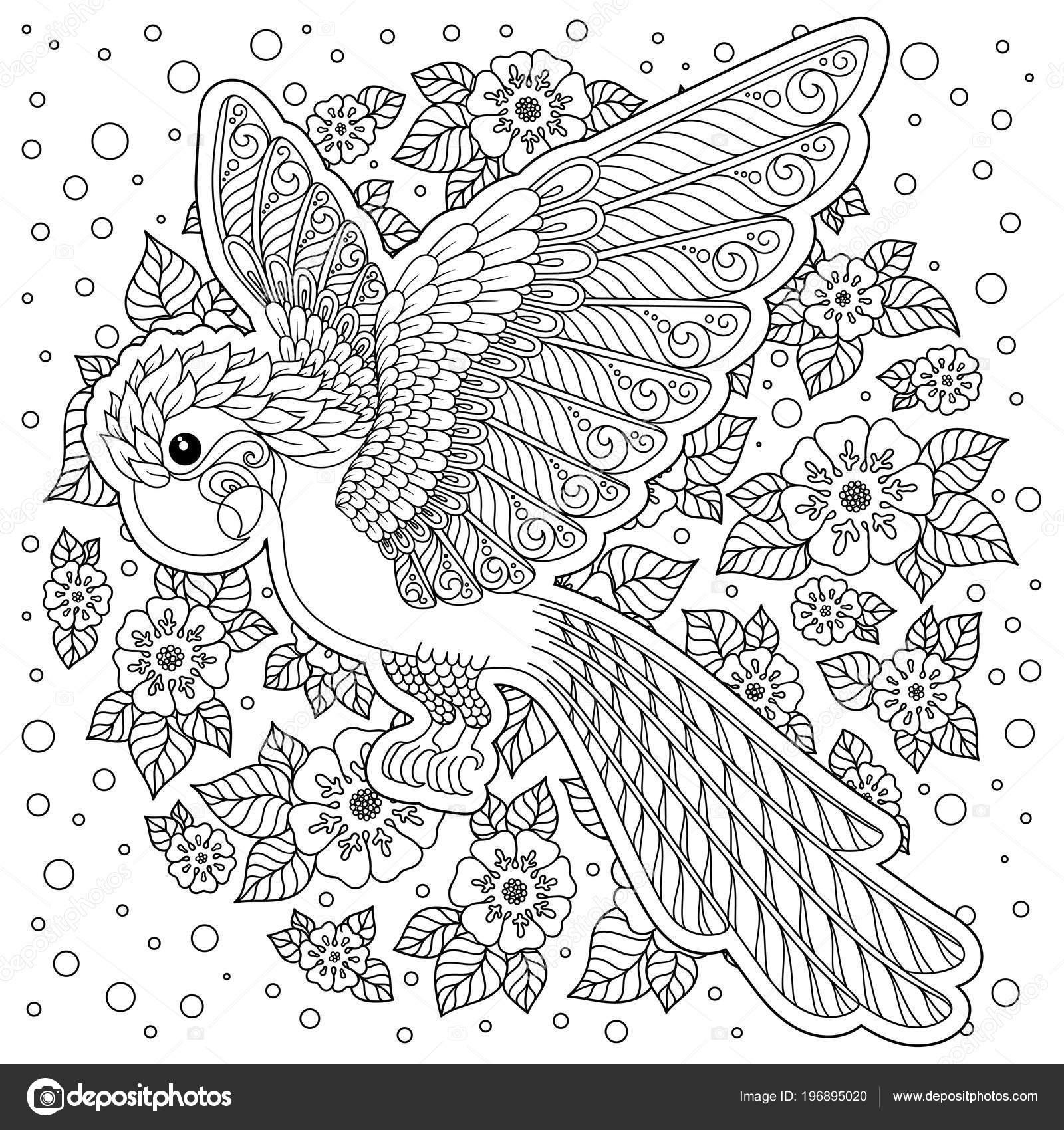 Perroquet Oiseau Tropical Illustration Vectorielle Livre