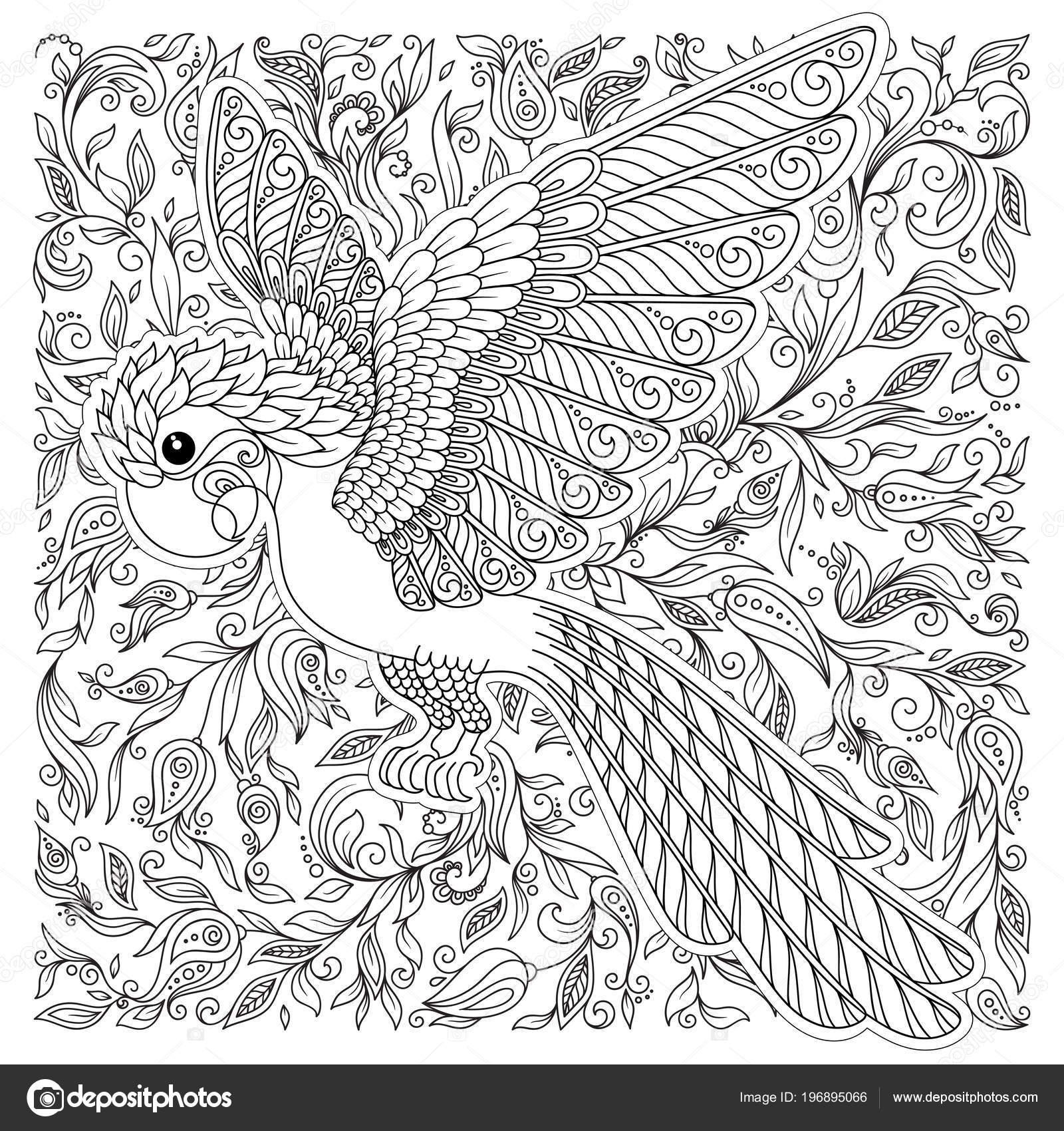 Exotische Vögel Fantastische Blüten Zweige Blätter Kontur Dünne