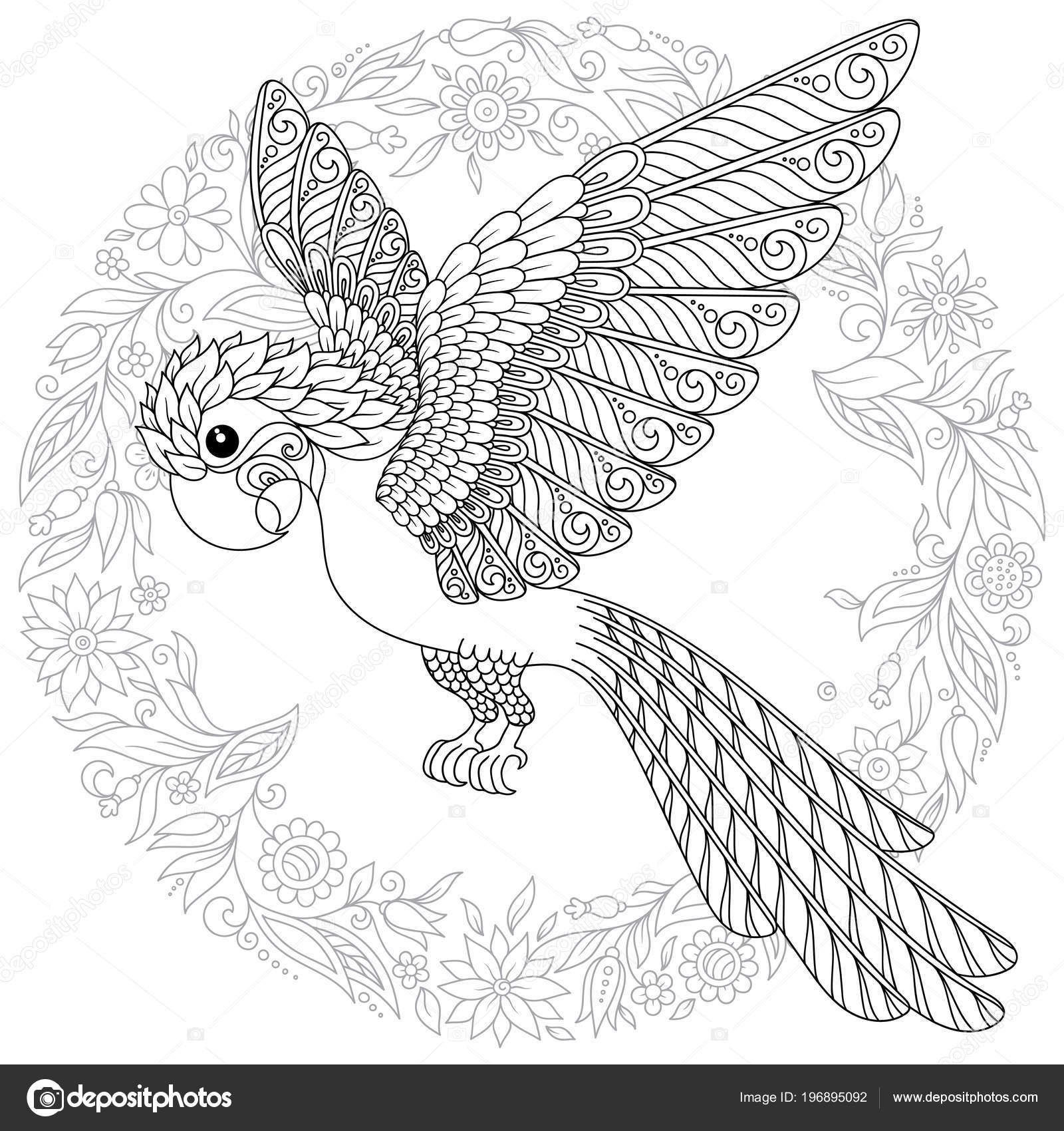 Zentangle Stilize çizgi Film Muhabbet Kuşu Papağan Stres Boyama