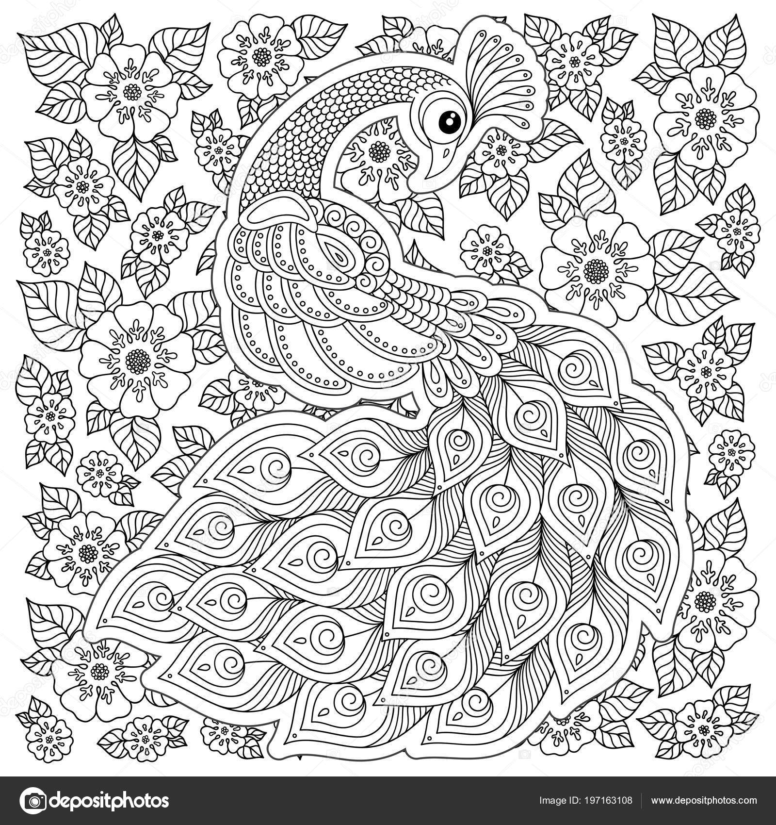 Peacock Adult Antistress Coloring Page Black White Hand Drawn