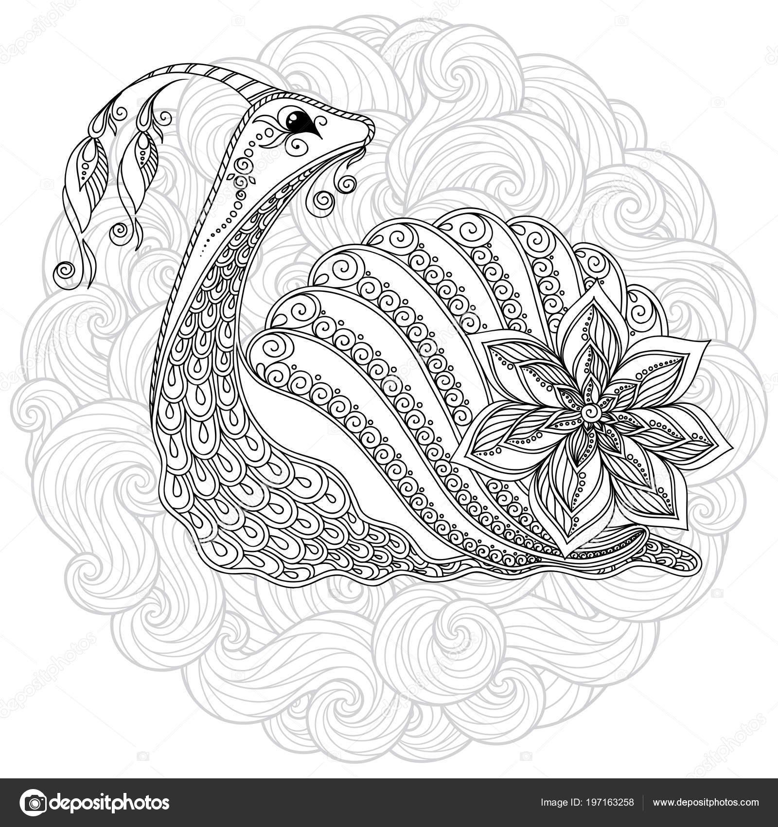 Kleurplaten Voor Volwassenen Tattoo.Slak Boek Kleurplaten Voor Volwassenen Vector Illustratie Antistress