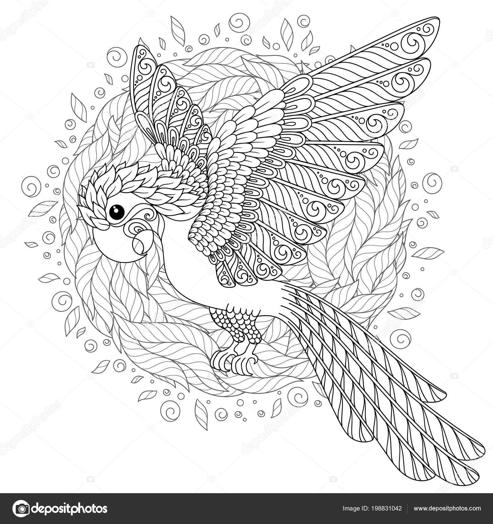 Kleurplaten Volwassenen Papegaai.Papegaai Tropische Vogel Vectorillustratie Kleurboek Voor