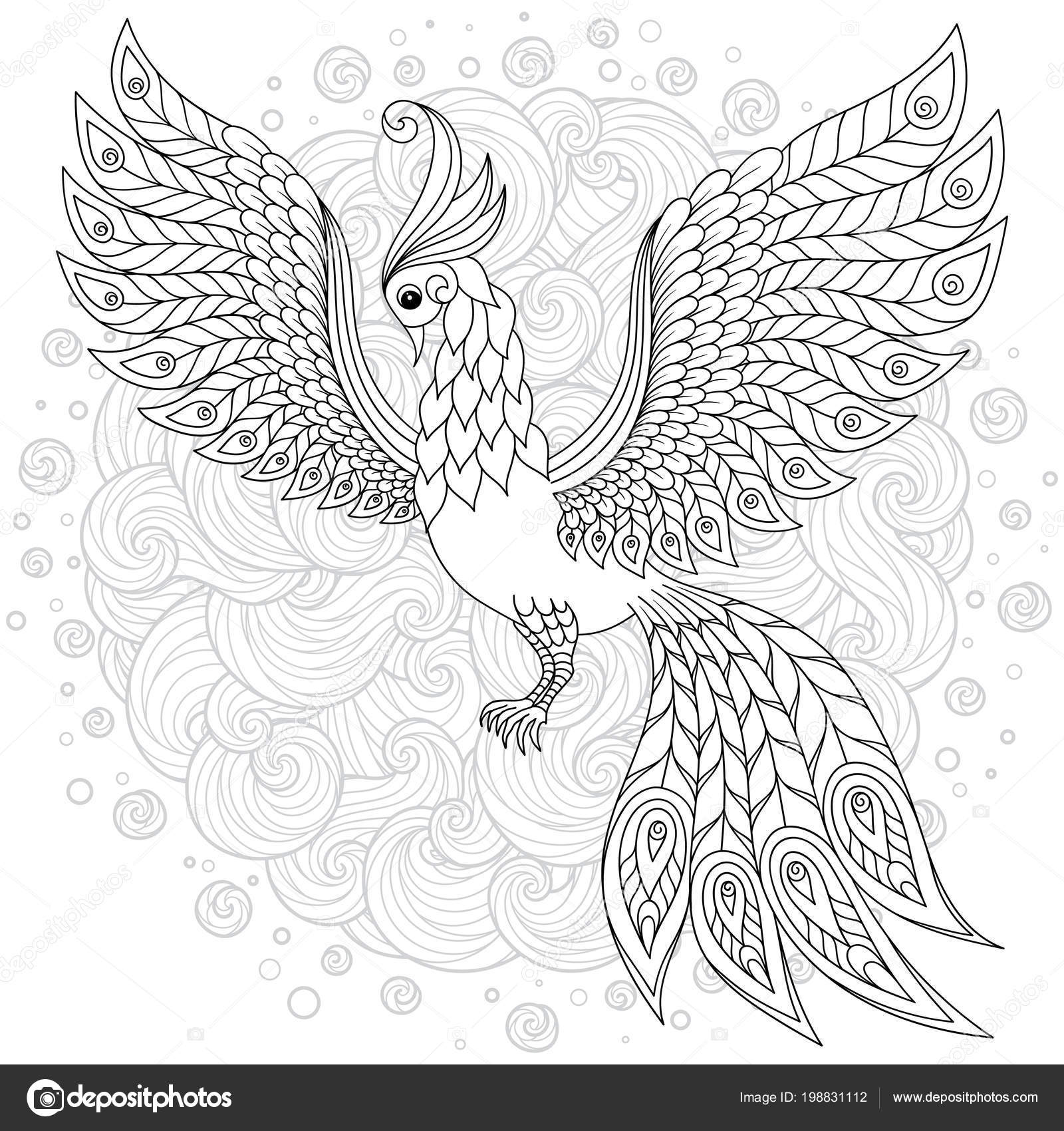 Aves Exóticas Fantásticas Flores Hojas Firebird Para Estrés Para ...