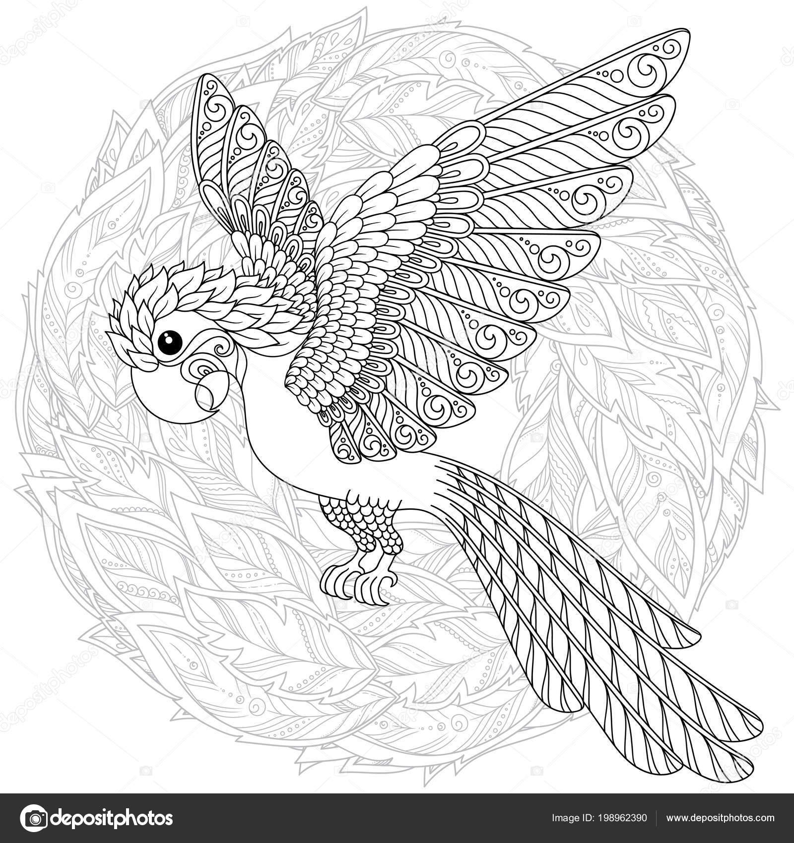 Kleurplaten Over Vogels.Papegaai Tropische Vogel Vectorillustratie Kleurboek Voor