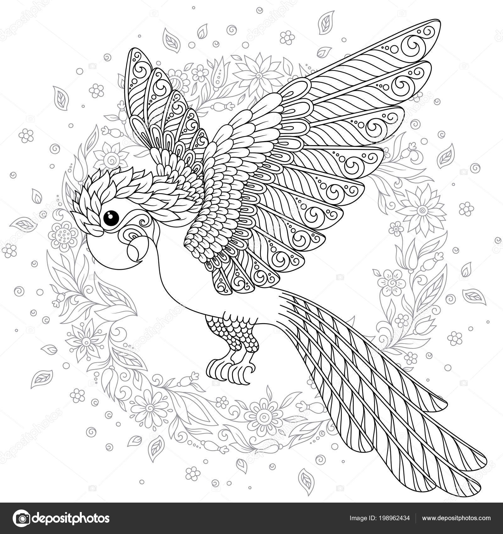 Zentangle Stylized Cartoon Budgie Parrot Hand Drawn Sketch Adult