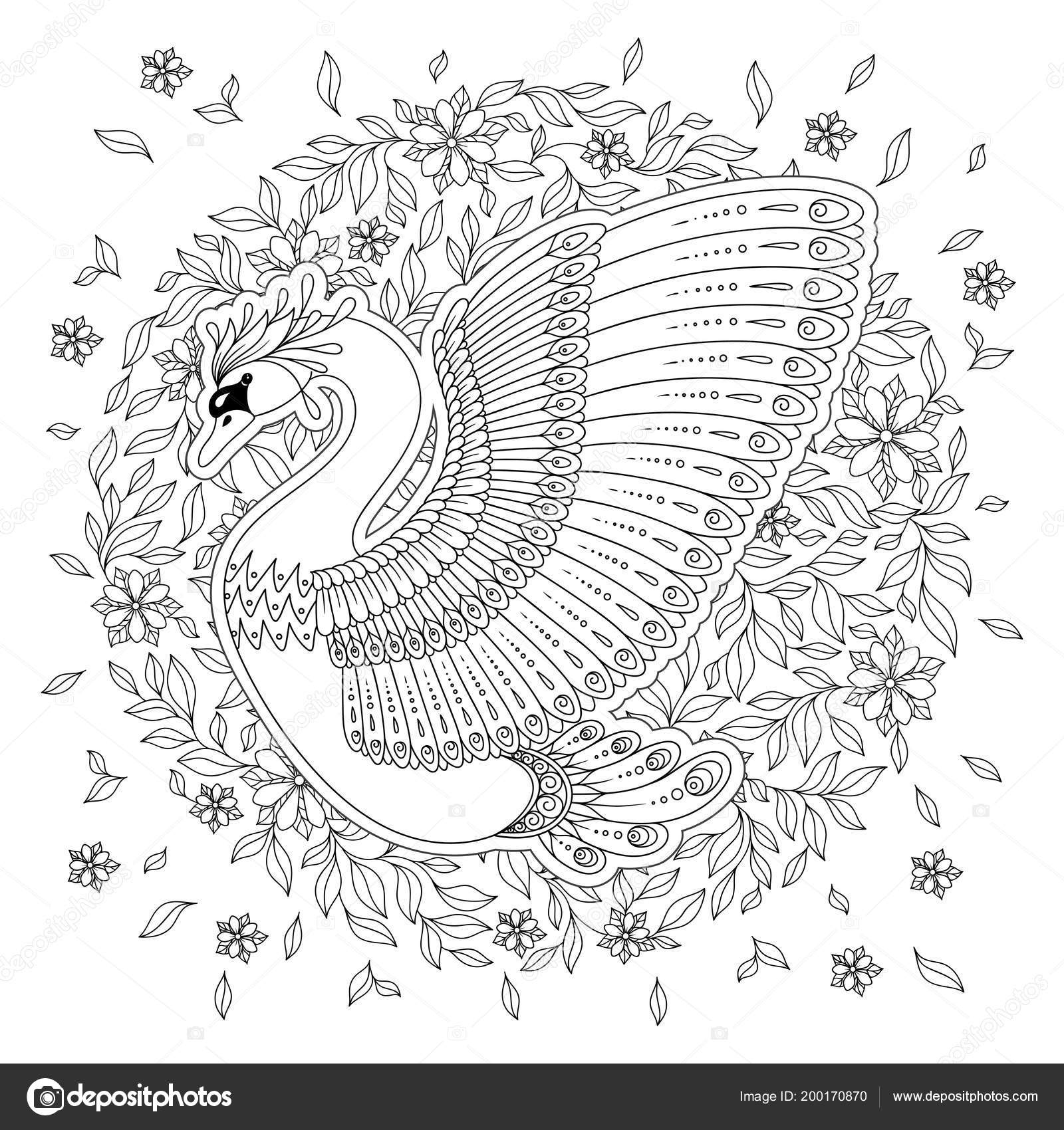 Hand Drawing Artistic Swan Adult Coloring Pages Doodle