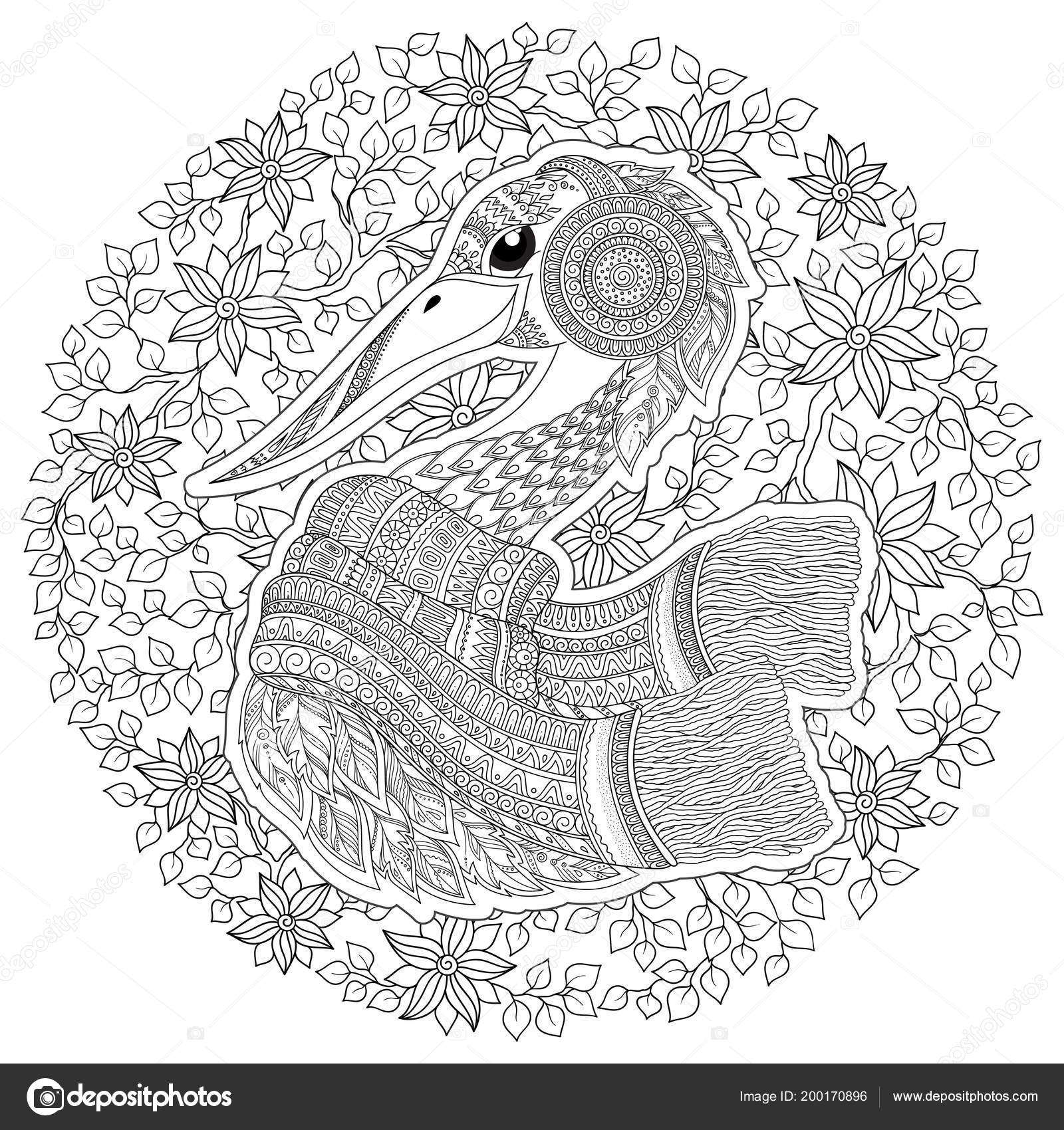 Stork Japanese Crane Coloring Book Adult Outline Drawing Coloring