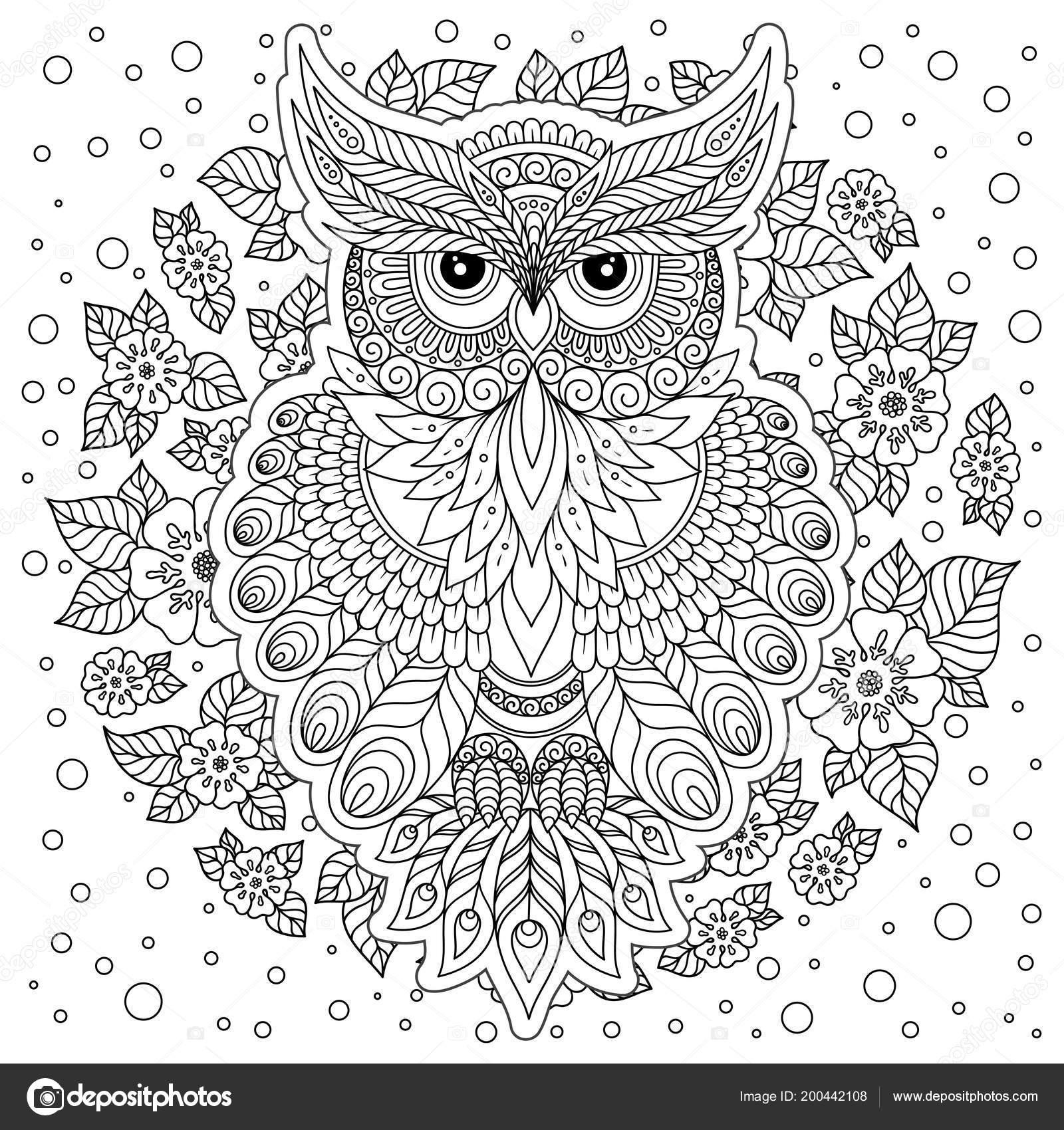 Volwassen Kleurplaten Uil.Kleurboek Voor Volwassenen Oudere Kinderen Kleurplaat Met