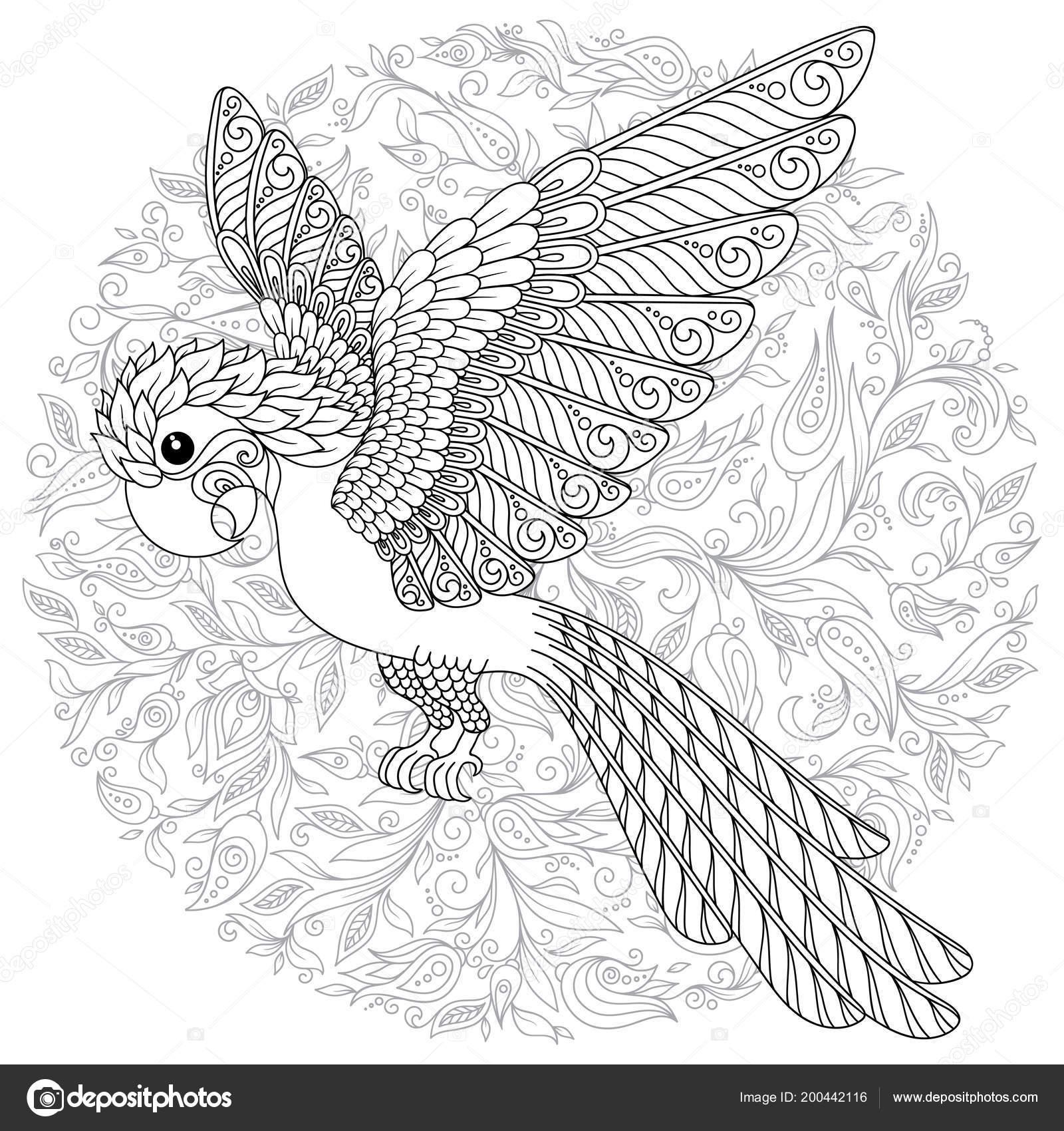 Papağan Tropik Kuş Vektör çizim Yetişkin Yaş üstü çocuklar Için