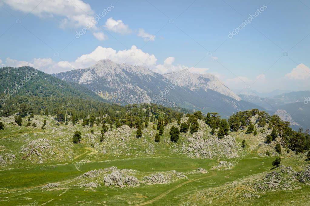 scenic view of green highland, trees and mountains under blue sunny sky, Cappadocia, Turkey