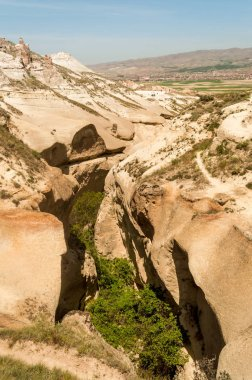 elevated view of slopes and trees with cityscape behind in Cappadocia, Turkey
