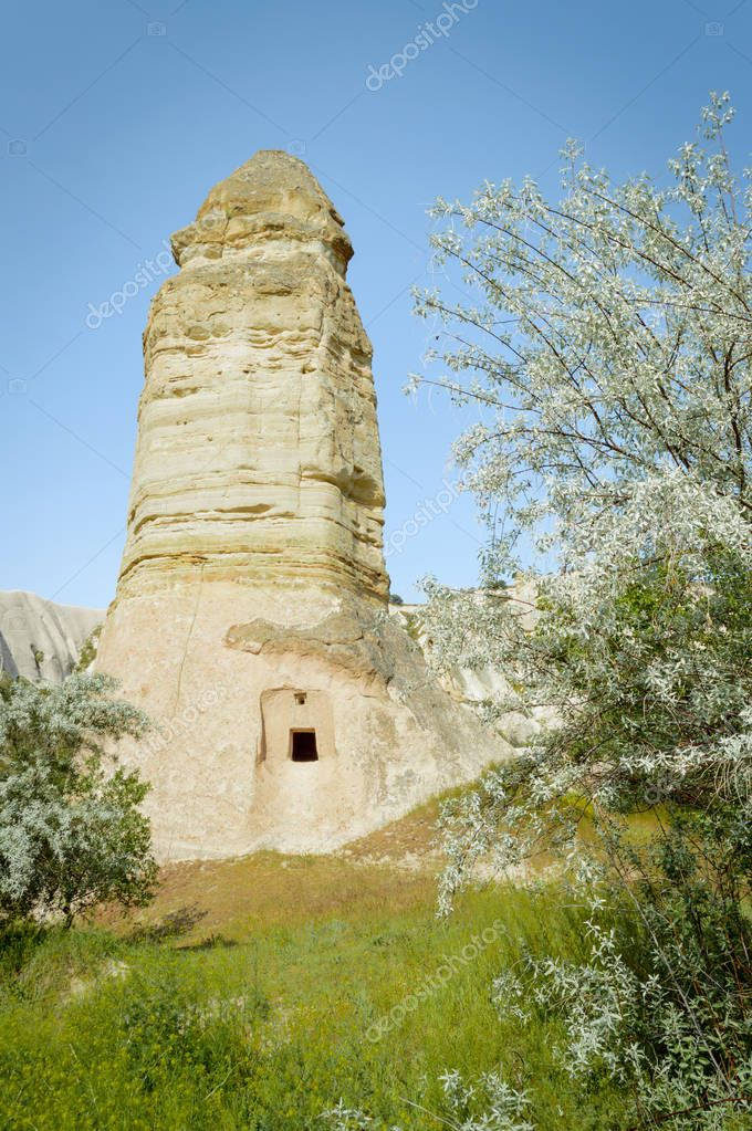 front view of trees and fairy chimney under blue sky, Cappadocia, Turkey