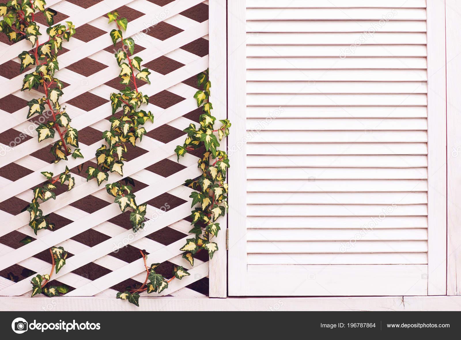 Enrejado de madera para pared | Pared Fachada Madera Enrejado Con ...