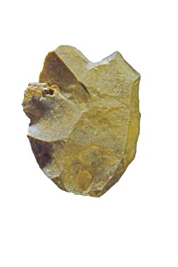 Mousterian flint scraper and cutter, with razor sharp cutting edge, made by Neanderthal man by knapping in Middle Stone Age