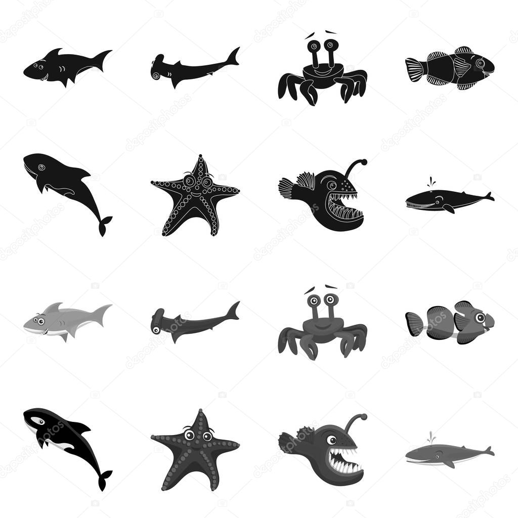 Isolated object of sea and animal symbol. Set of sea and marine stock symbol for web.