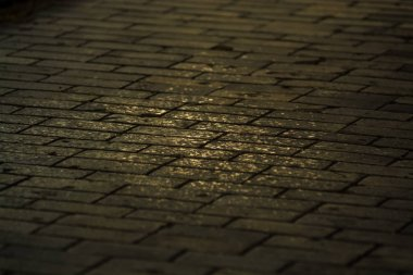 Background or texture from a broken and equal tile with patches of light and drops. Stone blocks on the sidewalk.