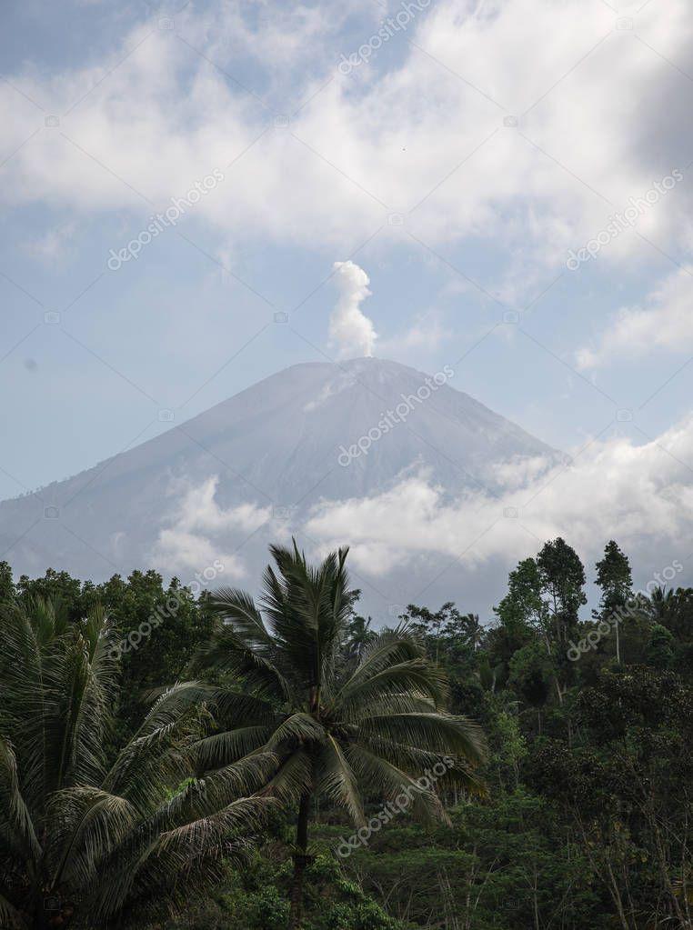 Lush jungle and the smoking Mount Semeru volcano in East Java, Indonesia