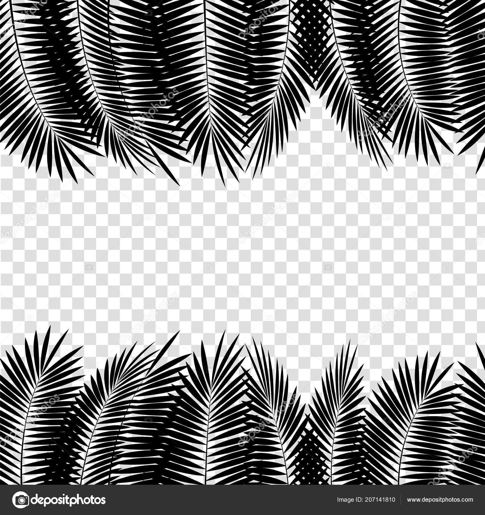 Download 620 Background Black White Vector Gratis Terbaik