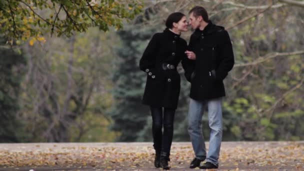 couple of lovers walking in the park in autumn