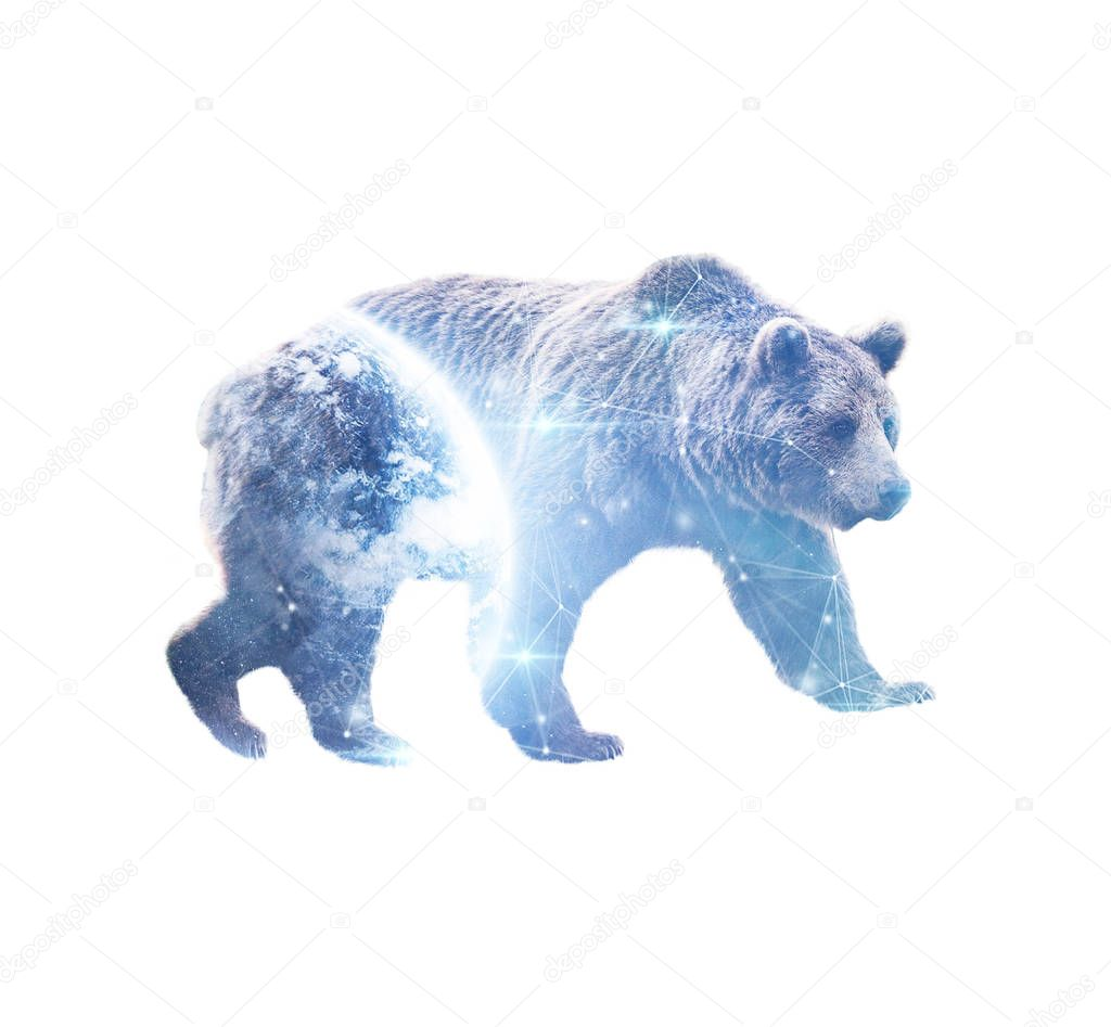 Double exposure of grizzly bear with blue space planet and low poly effect