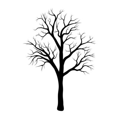 bare tree winter design isolated on white backgroun