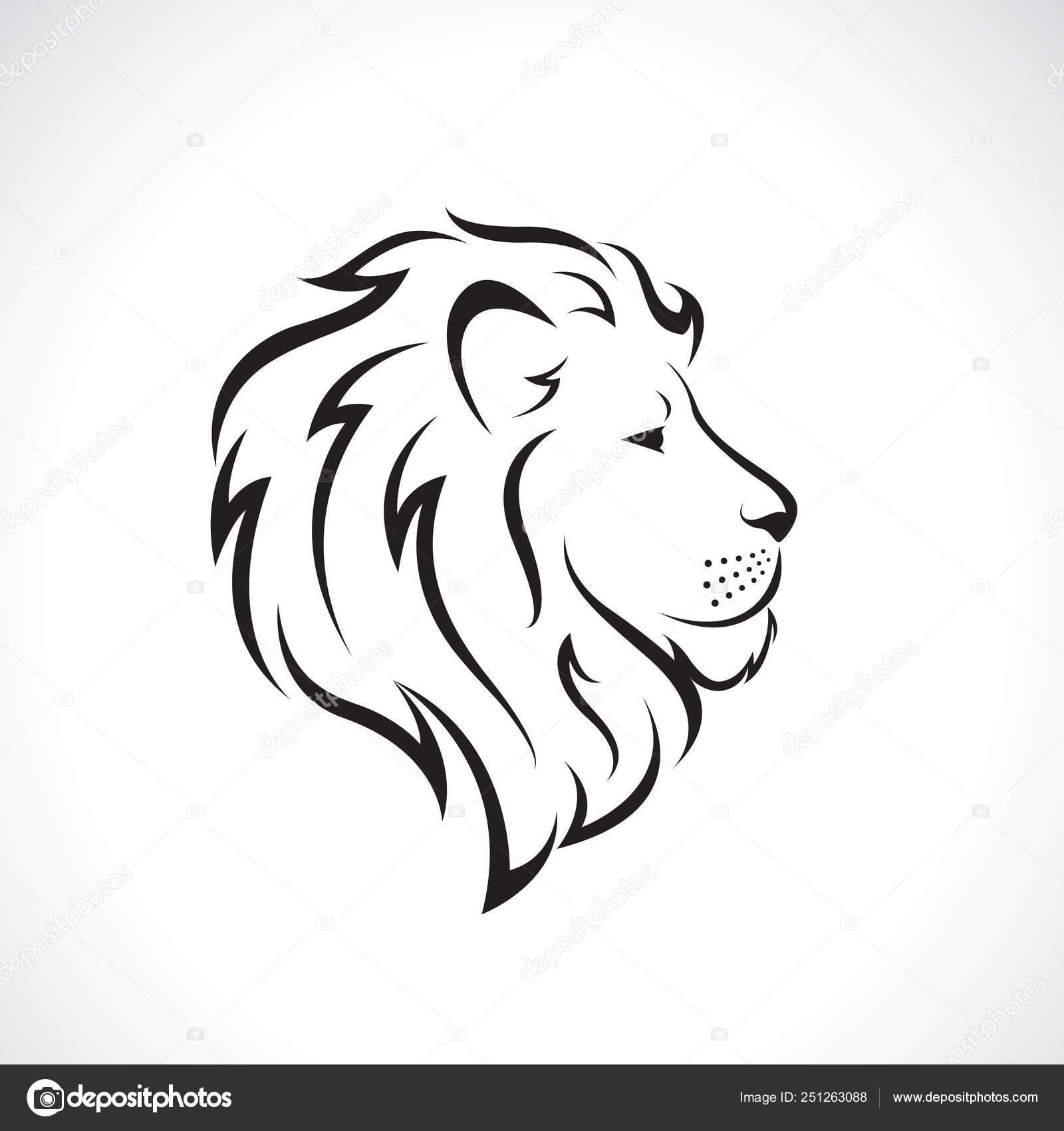 Leone Di Profilo Disegno.Vettore Male Background Design Vettore Di Disegno Della