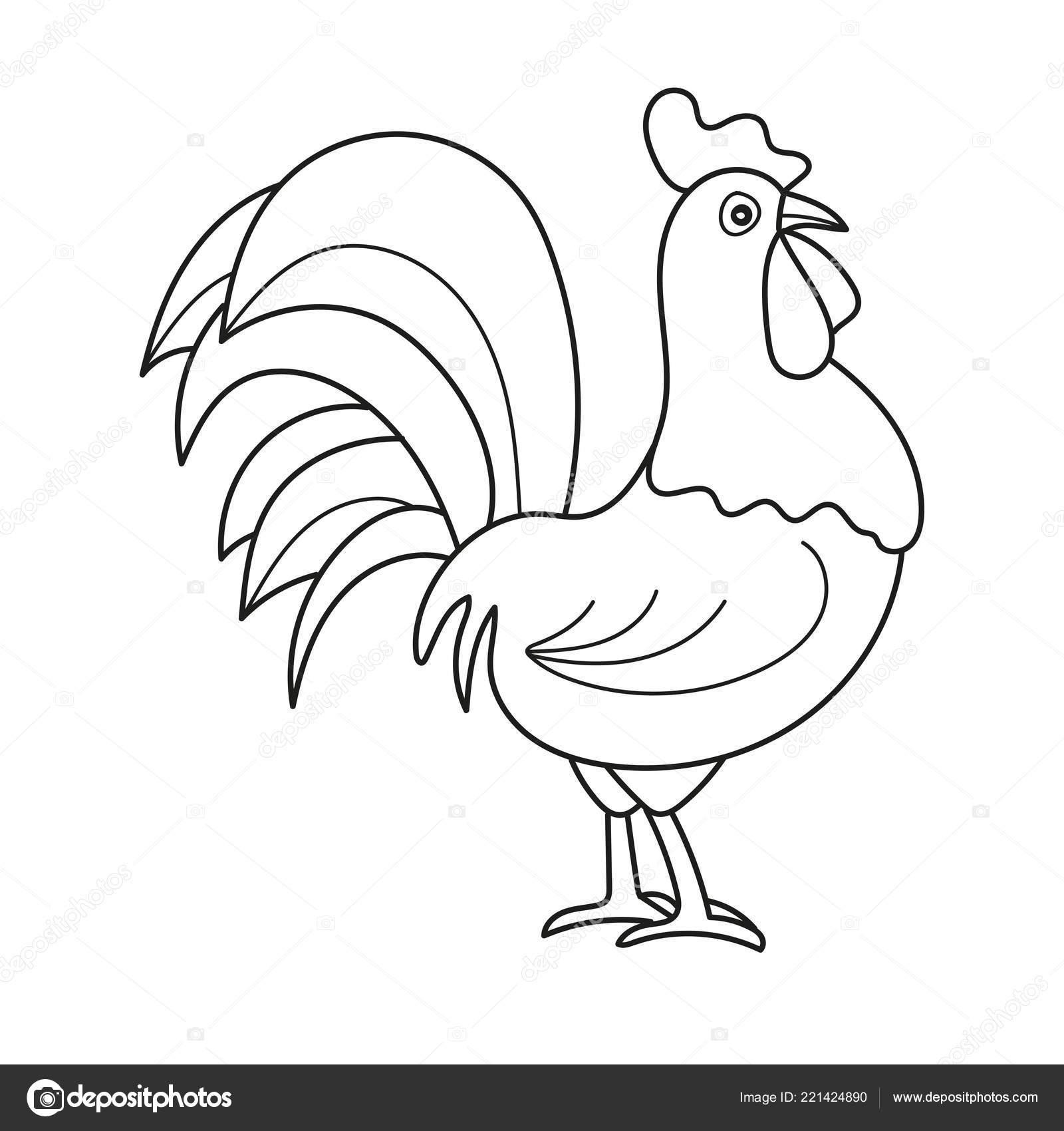 Esquema De Página Para Colorear Del Gallo De Dibujos Animados Libro