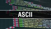 Fotografie ASCII concept illustration using code for developing programs an