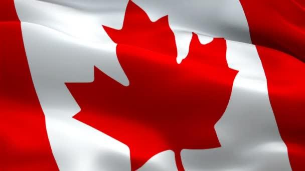 Toronto Stock Videos Royalty Free Toronto Footages Depositphotos