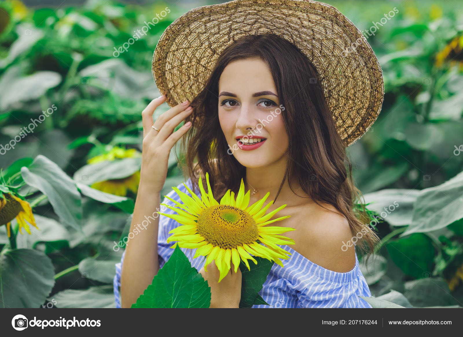 Young Beautiful Girl Dress Hat Field Sunflowers Stock Photo