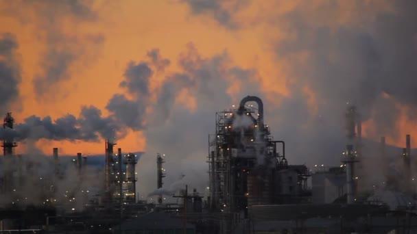 rostlina, emise do ovzduší, ekologie