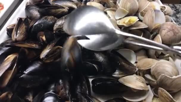 Muscheln und Muscheln aus nächster Nähe, Meeresfrüchte