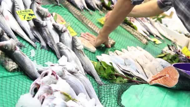 frischer Meeresfisch auf der Theke des Fischgeschäfts