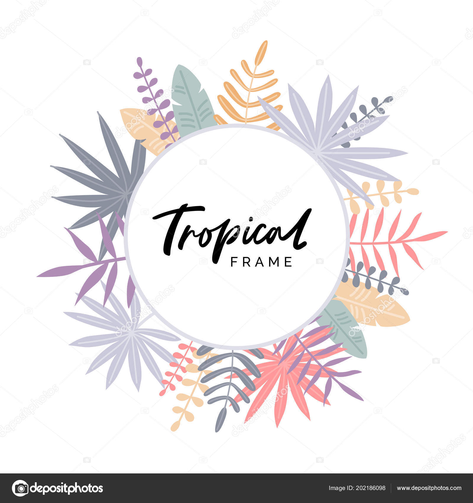 Tarjeta Felicitación Con Marco Tropical Ilustración