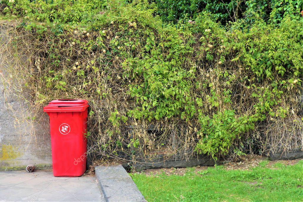 red bin  for medical waste