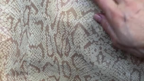 Texture genuine leather close up, embossed under skin python, background.Female hand strokes a beautiful Snake skin, luxurious
