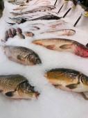 Friss élő halak jégen nyílt piacon közelről