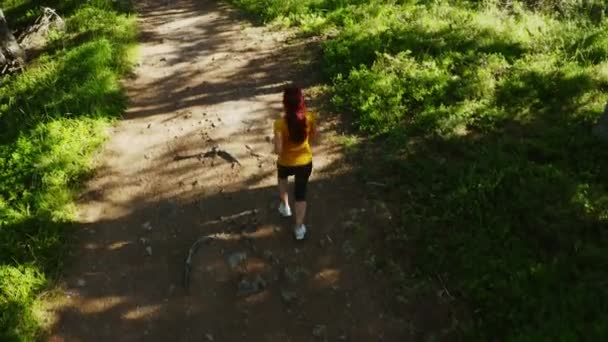 Tracking drone camera of woman girl running jogging in the mountain wood, 4k top view