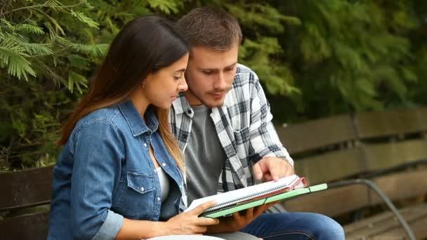 Dvě snaživý studenti studující porovnání poznámky společně v parku