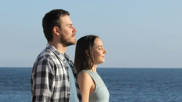 Side view portrait of a happy couple breathing fresh air on the beach
