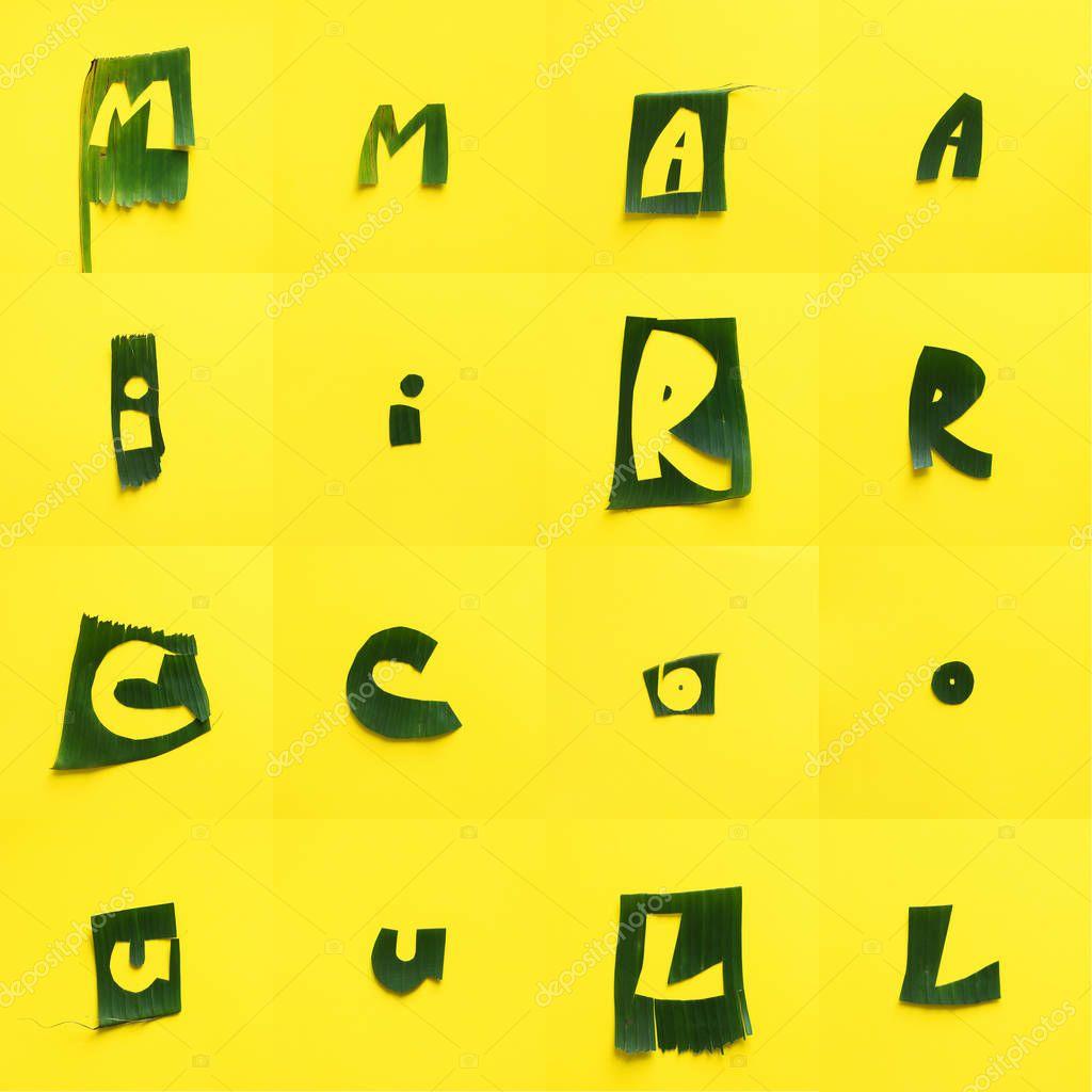English alphabet letter green tropical leaves each