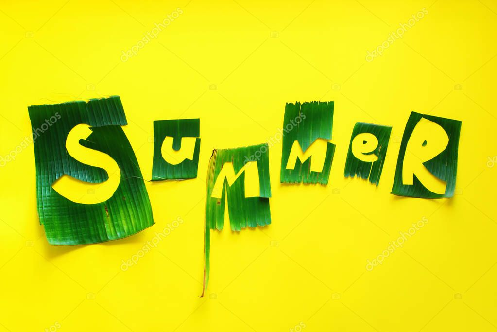 Word SUMMER letters from green tropical leaves