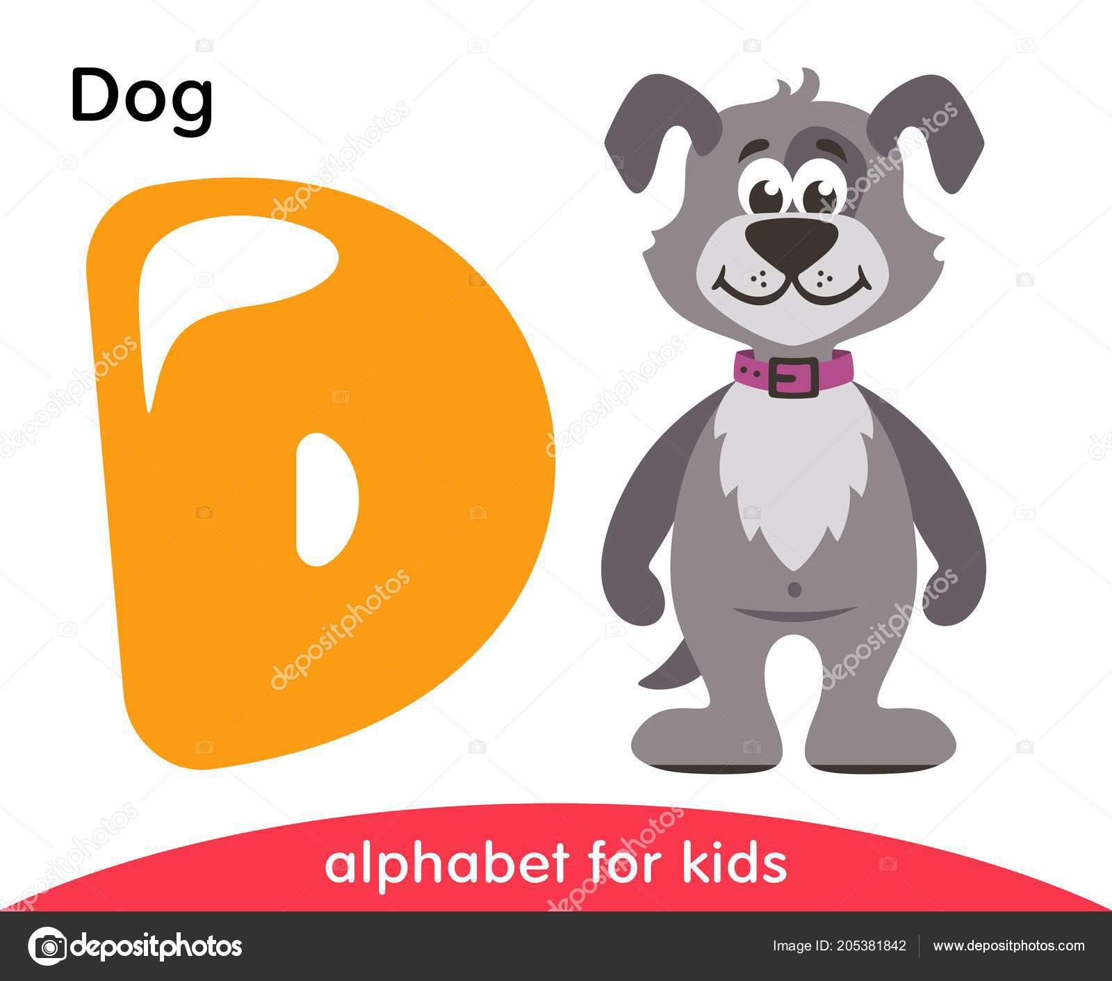 yellow letter gray dog english alphabet animals cartoon characters
