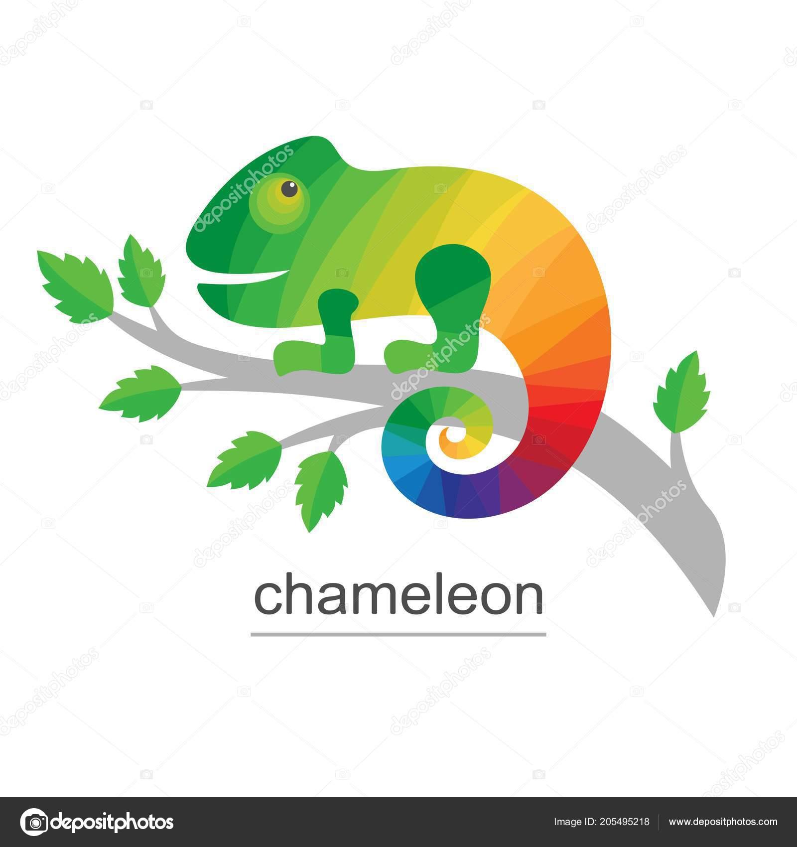 Logo Chamäleon Auf Ast Bunte Symbol Für Unternehmen Vektor