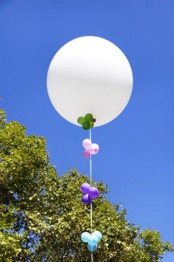 white rubber balloon