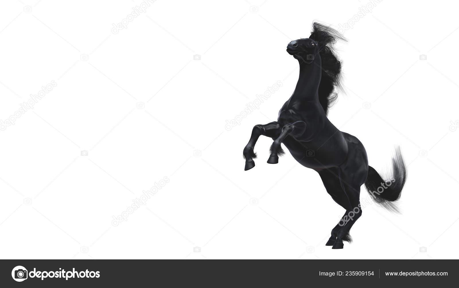 Black Running Horse White Background Stock Photo C Vitaliy Sokol 235909154