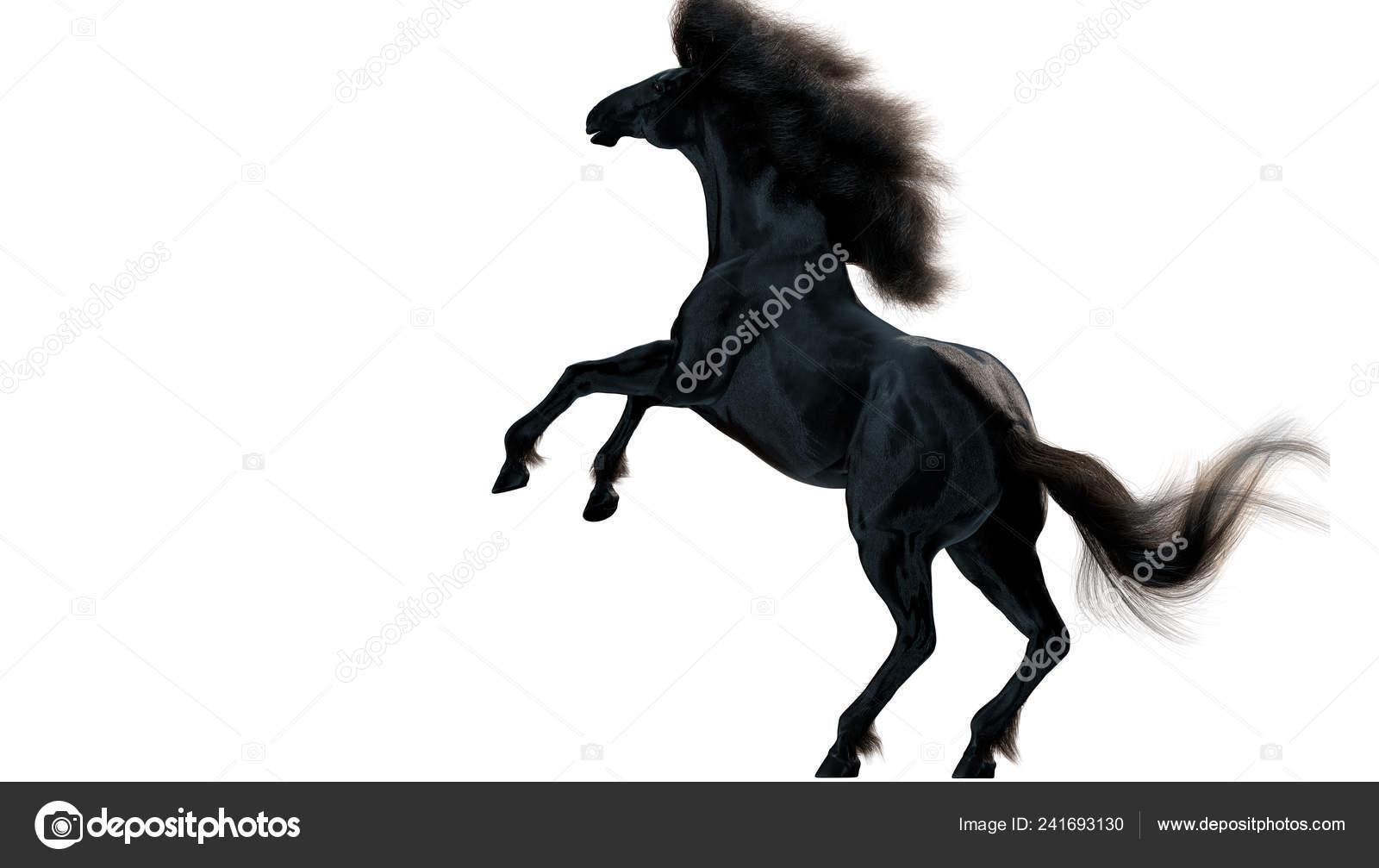 Black Running Horse White Background Illustration Stock Photo C Vitaliy Sokol 241693130