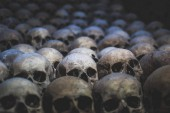 Photo Collection of skulls covered with spider web and dust in the catacombs. Rows of creepy skulls in the dark. Abstract concept symbolizing death, terror, and evil.