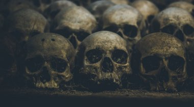 Collection of skulls covered with spider web and dust in the catacombs. Rows of creepy skulls in the dark. Abstract concept symbolizing death, terror, and evil.